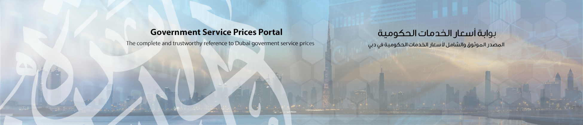Government Service Prices